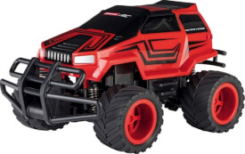 RC Wild Crusier