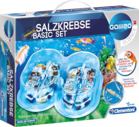 Clementoni Galileo - Salzkrebse Basis Set