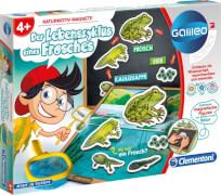 Clementoni Galileo- Der Lebenszyklus eines Frosches