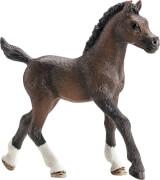 Schleich Horse Club - 13762 Araber Fohlen, ab 3 Jahre